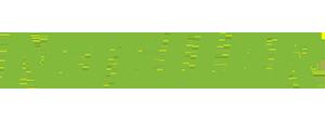 Neteller betalingsmotode logo
